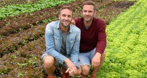 The Happy Pear's David and Stephen Flynn have just published their fourth cookbook. Photograph: Dara Mac Dónaill
