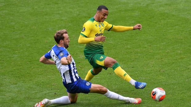 Irish striker Adam Idah is tackled by Brighton's Dale Stephens during Norwich's 1-0 defeat. Photograph: Justin Setterfield/Getty