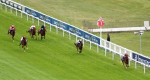 Aidan O'Brien's Love destroyed the field to win the Oaks at Epsom. Photograph: David Davies/Getty/AFP