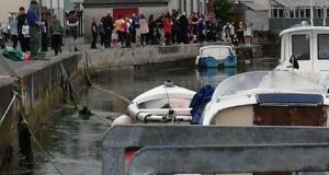 Crowds gather to see the rare whale at Wicklow Harbour. Photograph: Irish Whale and Dolphin Group/Twitter