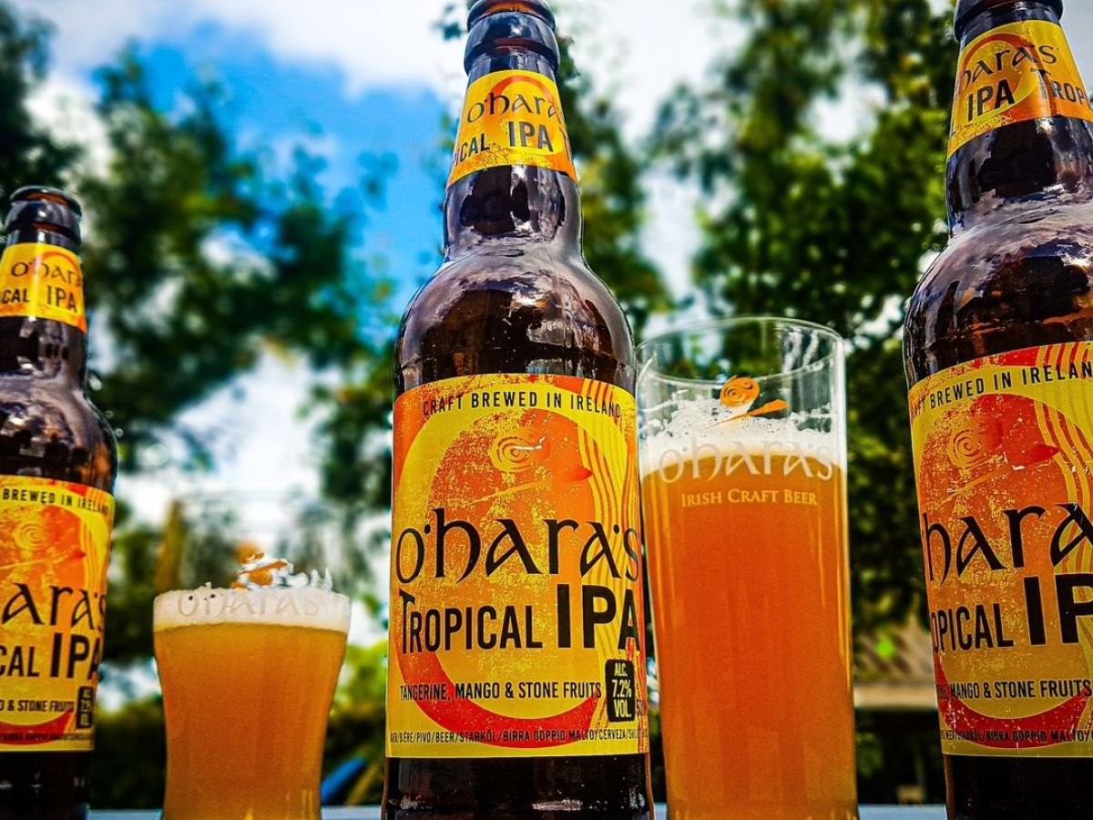 O'Hara's: The old hand of Irish craft beer hops into new adventures