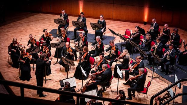The Irish Chamber Orchestra will play an outdoor concert of Astor Piazzolla and Antonio Vivaldi's The Four Seasons, as well as a series of micro-music sessions.