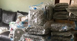Undated handout photo issued by the PSNI of cannabis worth more than £2 million which detectives have seized in Belfast. Photograph: PSNI/PA Wire