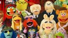 Muppets: some have no Earthly analogues; some resemble the four main Earth species: bear, human, frog and pig