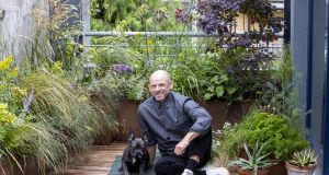 Mark Grehan and his French bulldog, Finn,  in his garden at his apartment in Cork Street, Dublin. Photograph: Tom Honan