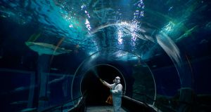 A worker disinfects the oceanic tunnel of the Rio de Janeiro Aquarium (AquaRio) on the eve of the reopening of the touristic attraction, in Rio de Janeiro, Brazil. Photograph: Mauro Pimentel/Getty