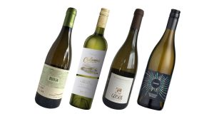 A quality selection of  white wines to pair with all types of seafood dishes
