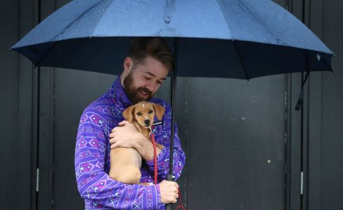 D'AWW: David Bromell with puppy 'Daisy' as they sheltered from the showers in Dublin city centre. Photograph: Nick Bradshaw