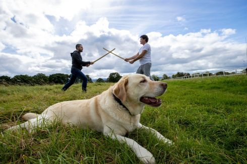 Iain Hull and Fergal McGirl practicing Aikido in the Phoenix Park, Dublin as Holly waits patiently. Photograph: Tom Honan/The Irish Times