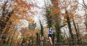 The 2020 European Cross-Country Championships were due to take place at the purpose-built course at Abbotstown. Photograph: Tommy Dickson/Inpho