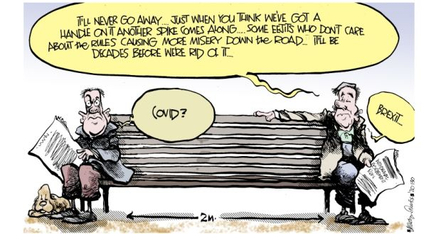 Martyn Turner on Brexit and Covid