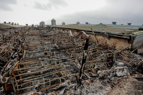 FARM FIRE: The scene after an accidental fire that started in a large farm shed in Kilkeel, Co Down, overnight, killing up to 2,000 pigs. Photograph: Philip Magowan/PressEye