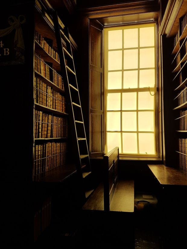 Morning sun in the library
