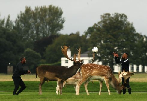 PARK LIFE: Two men play football alongside fallow deer in Dublin's Phoenix Park on Friday. Photograph: Brian Lawless/PA Wire