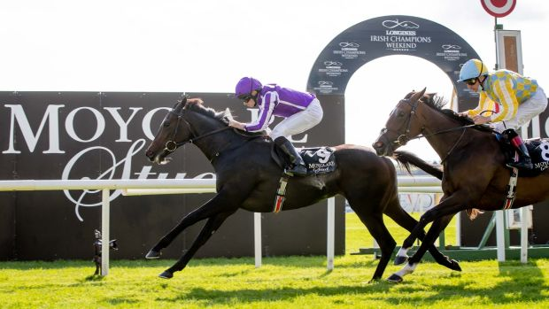 Shale and Ryan Moore take The Moyglare Stud Stakes on Sunday. Photograph: Morgan Treacy/Inpho