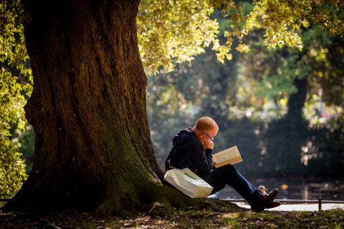 THE WORLD GOES BY: A man finds perfect immersion in a book on a sunny day in St Stephen's Green, Dublin. Photograph: Tom Honan