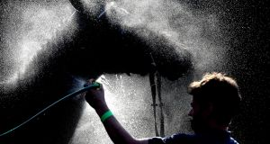 A race horse is sprayed with water to cool it down following a race at Warwick. Photograph: David Davies/Getty Images