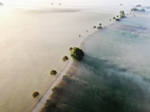 MISTY ATMOSPHERE: A shot taken with a drone shows morning fog in Kvaerndrup, Fyn island, Denmark. Photograph: Michael Bager/EPA