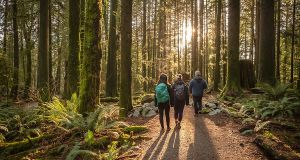 Hike one of Ireland's waymarked trails. Photograph: iStock