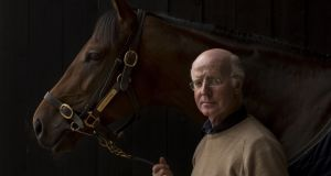 Trainer John Oxx with Sea the Stars, who won six Group One races in six months in 2009, including the 2,000 Guineas, the Derby and the Prix de l'Arc de Triomphe. Photograph: Morgan Treacy/Inpho