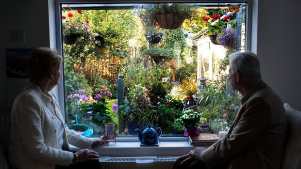 Owen and Claire Connolly look out from the back window to their garden in Dundrum. Photograph: Damien Eagers