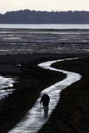 A man walks along a pathway on the shores of Strangford Lough, Co. Down. Photograph: Brian Lawless/PA Wire