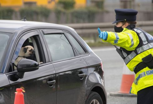 A pug looks on as gardaí conduct a Covid-19 checkpoint on the N7 at Blackchurch. Photograph: Colin Keegan/Collins Dublin