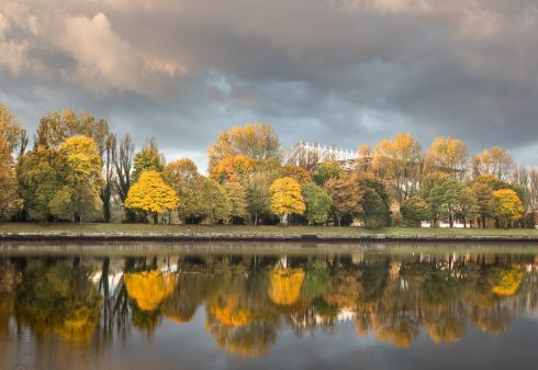 Autumnal trees in the early morning light at Páirc Uí Chaoimh on the Marina in Cork. Photograph: David Creedon/Anzenberger