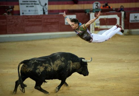 OLÉ: Spanish bull sidestepper Javier Pradanas in action during 'Ciudad de Santo Reino' sidesteppers contest as part of San Lucas Fair held in Jaen, southern Spain. Photograph: Jose Manuel Pedrosa/EPA