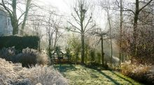 How to create a classic tailored winter garden