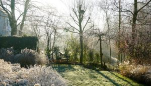 A landscape garden  on a winter morning