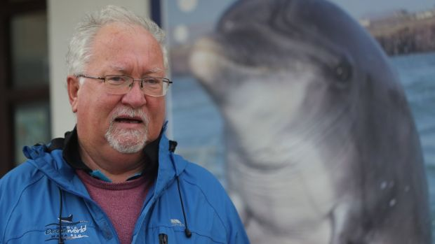 Dr Kevin Flannery, marine biologist and director of Dingle Oceanworld, is hopeful the dolphin is still alive. Photograph: Niall Carson/ PA Wire