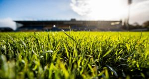 Semple Stadium will host the Munster hurling decider between Limerick and Waterford. Photograph: Inpho
