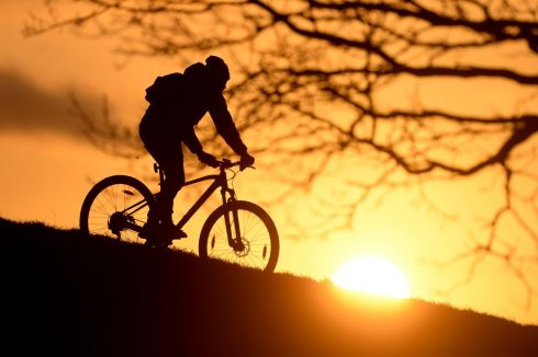 RIDE OFF INTO THE SUNSET: Paul Calugar from Cabra cycles in Dublin's Phoenix Park as the sun sets. Photograph: Alan Betson/The Irish Times