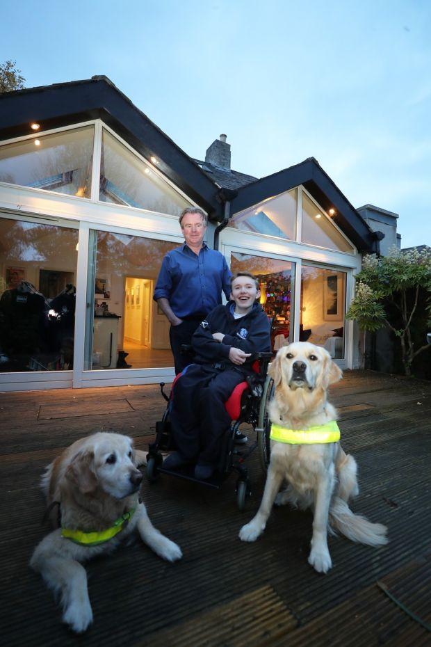 Tom Clonan with Duke and Leahy and his son Eoghan. Photograph: Nick Bradshaw