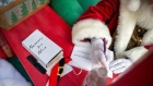 Santa Claus to be exempt from Ireland's Covid quarantine rules