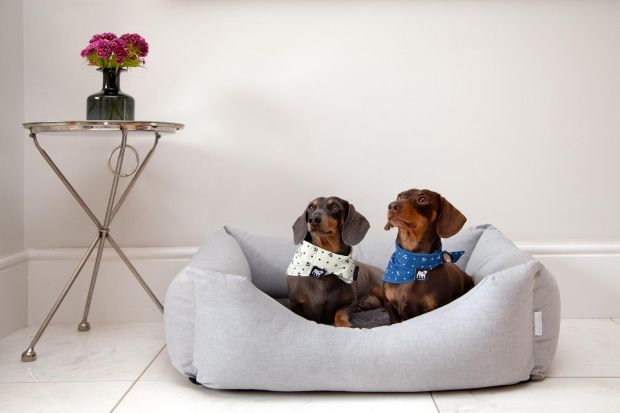Dog bed from Hugo & Otto