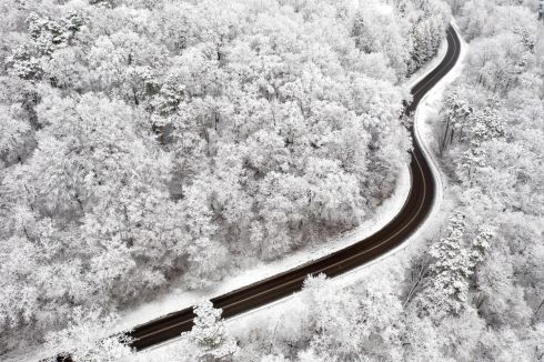 DASHING THROUGH THE SNOW: A provincial road through a forest with trees covered in snow near the village of Korytniki in Podkarpacie region, southeastern Poland. Photograph: Darek Delmanowicz/EPA