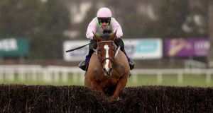 Faugheen is unlikely to appear at this year's Cheltenham Festival. Photograph: Bryan Keane/Inpho