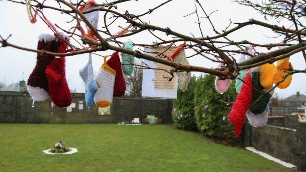 Children's woollens hang on a tree in the rain at the Tuam babies' burial ground. Photograph: Joe O'Shaughnessy