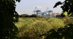 The Irish Glass Bottle site at Ringsend. Ronan Group Real Estate (RGRE) and Oaktree signed up before Christmas to pay €200 million to buy an 80 per cent stake in the company holding the 37-acre site from Nama. Photograph: Cyril Byrne/The Irish Times