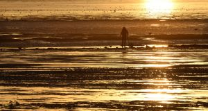EARLY BIRD CATCHES THE WORM: Digging for ragworm at sunrise in Clontarf, Dublin. Photograph: Dara Mac Dónaill/The Irish Times