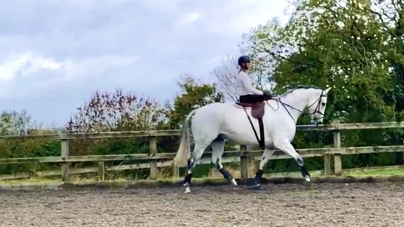 Helen Cooke: riding side-saddle