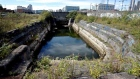 Historic 200 year-old graving docks in Dublin may be sold