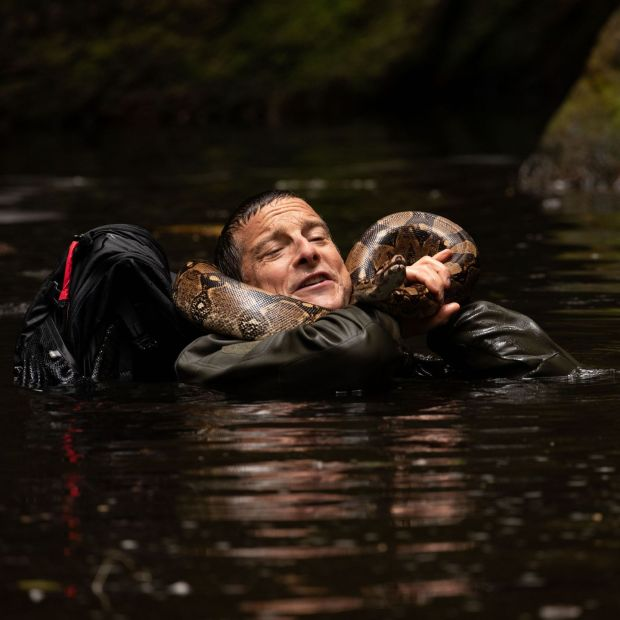Bear Grylls in Animals on the Loose: A You vs Wild Movie.