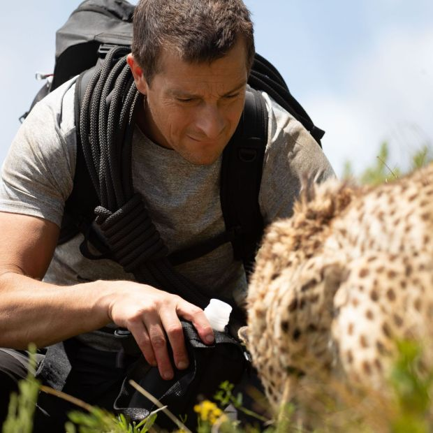 Netflix Feb 2021. Bear Grylls in Animals on the Loose: A You vs Wild Movie - Production Stills