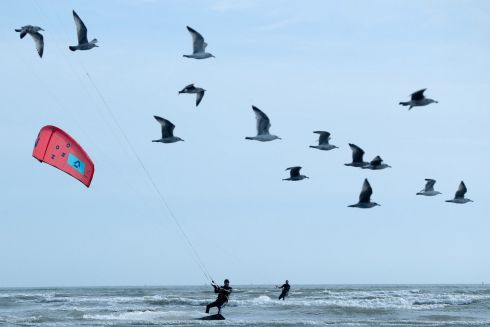 CATCH A WAVE: Kitesurfers take to the waves at Dollymount Beach, Clontarf, Dublin. Photograph: Maxwell's
