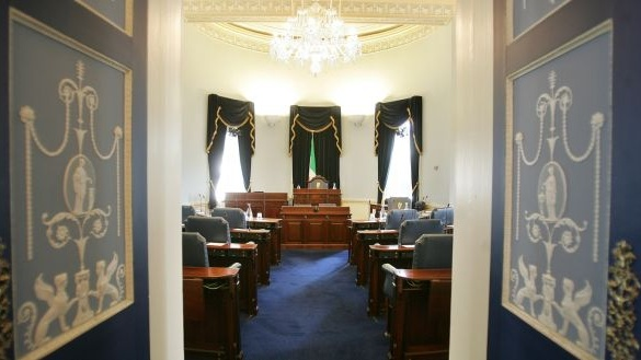 Failure to extend Seanad franchise is unconstitutional, High Court told - irish times