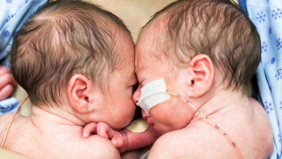 Peak twins: More born than ever before but rate likely to drop