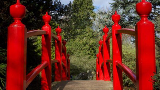 Bridge, Japanese Gardens , Kildare